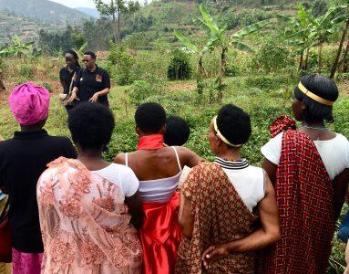 Rwanda women in coffee