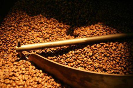 Coffee Mareeba